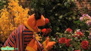 Sesame Street: I Wonder Song thumbnail