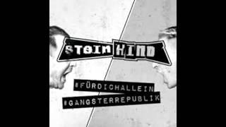 Steinkind - Gangsterepublik.  [ EBM / Dark Electro / SynthPop / Cyber / Goth ]