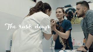 La Operación de Atlas - The Rush Days 4