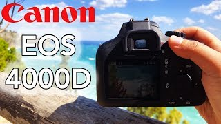 Canon EOS 4000D + Test Foto & Video - APS-C perfetta per iniziare