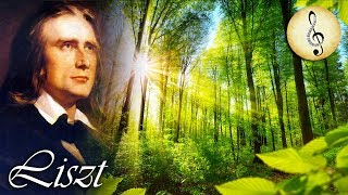 Liszt Classical Piano Music for Studying, Concentration, Reading and Relaxing Study Music