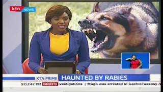 Murang'a family in agony  as second daughter bit by dog that killed her sister last week
