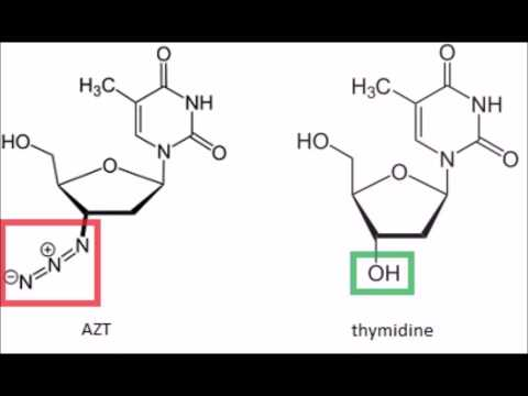 AZT: the story of HIV's first drug
