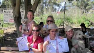 @sydney Twestival For @rspca Nsw Age Old Question: Are You A Cat Or Dog Lover?