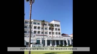 [제주] 금호리조트 찐후기, 제주도 아기랑, 큰엉동 스…