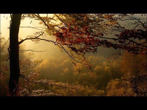 Frédéric Chopin - Prelude in E Minor Op. 28 No. 4