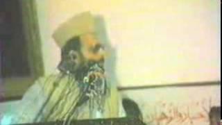 allama ehsan elahi zaheer5