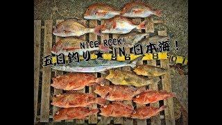 山口県/萩市 日本海釣行!H29年3月4日 根魚狙い! 坪内知佳 検索動画 12