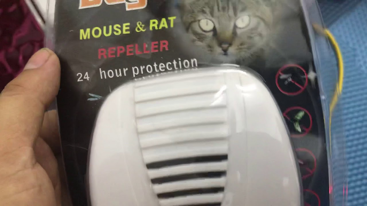 Máy đuổi côn trùng, đuổi chuột Bug Scare hiệu quả