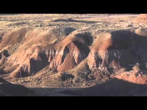 SVP 2015 part 4: Petrified Forest Part 2