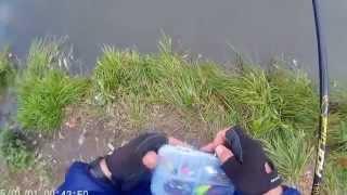 Платная рыбалка в Московской области. Платные пруды. Рыбалка в Москве. Ловля форели.