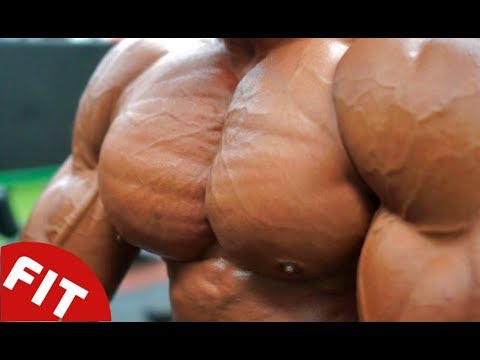 WORLD'S GREATEST CHEST WORKOUT