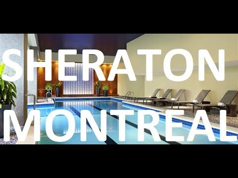 Sheraton Montreal VIDEO - Club Lounge, Rooms, Breakfast, Pool, Gym, Bathrooms TV Walk Through
