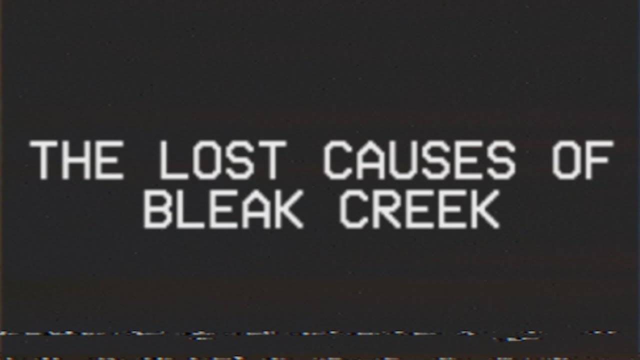 We Wrote a Novel: The Lost Causes of Bleak Creek