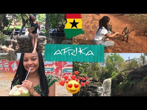 Poprvé v AFRICE! ♥️ vodopády, prales,opice