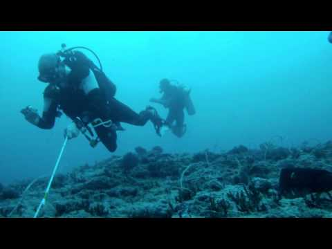 Treasure Diving in indonesia