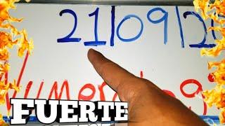 NÚMEROS PARA HOY 21/09/21 DE SEPTIEMBRE PARA TODAS LAS LOTERIA