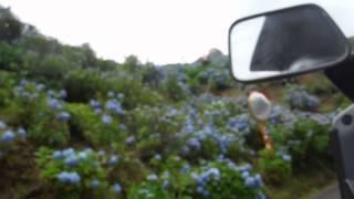 怪しい雲行きでしたが、ジャイロ キャノピーでチョイツーリング、佐那河...