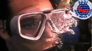 видео Курс Underwater Naturalist PADI