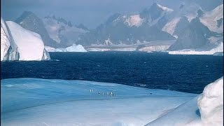 Flat Earth: Wikileaks and Antarctica - Something Big This Way Comes #130