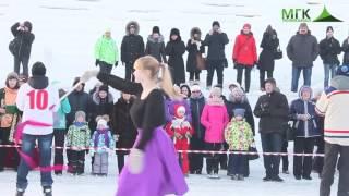 Ледовое шоу 2017