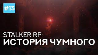 Задание для Свободы #2 ●  STALKER ONLINE RP ● 18+
