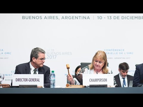 The11th WTO Ministerial Conference in Buenos Aires in retrospect