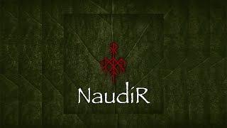 Обложка Wardruna NaudiR Lyrics HD Quality