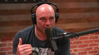 Joe Rogan and  Brendan Schaub talk about Cro Cop