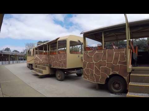 Werribee Zoo Safari tour - December 2016