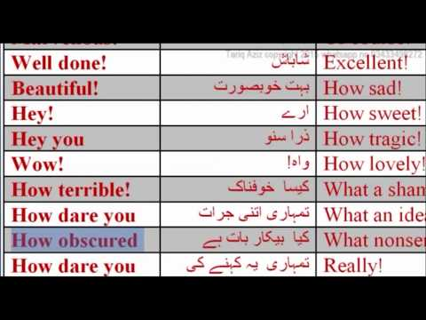 lesson forty six Three words to express feelings by Tariq Aziz