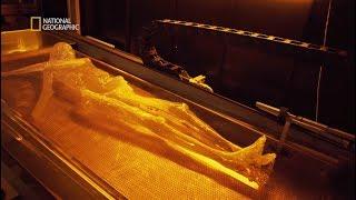 Rozwiązaliśmy kryminalną zagadkę sprzed ponad 5000 lat! [Człowiek lodu: tajemnicza śmierć]
