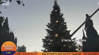 Πύργο της Πίζας έπαθε το δέντρο στο Σύνταγμα μετά τη βροχή | Luben TV