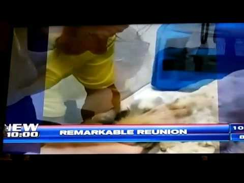 Lily's Reunion on WSVN Ch. 7 News with Jessica Holly