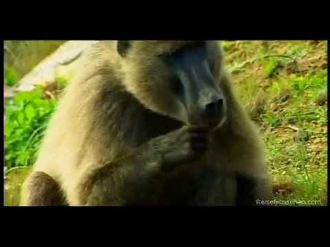 Lesotho by Reisefernsehen.com - Reisevideo / travel video