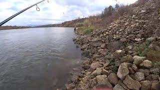Рыбалка в ноябре на спиннинг с берега Ловля на ДЖИГ по новым точкам