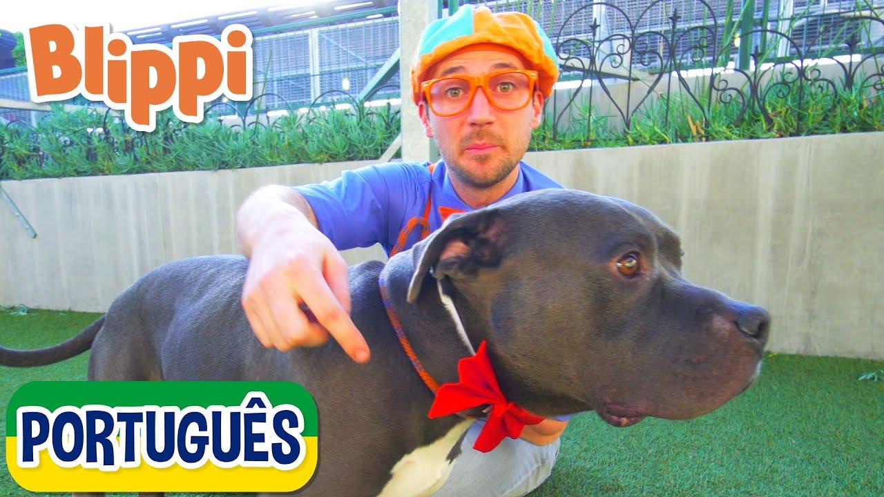 Blippi Visita um Abrigo de Animais   Vídeos Educativos para Crianças   As Aventuras de Blippi