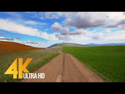4K Scenic Drive - Palouse Roads, Washington State | 3 Hour of Road Drive with Soothing Music