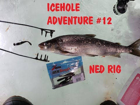 Icehole Adventure #12 Ice Fishing Whitefish (Ned Rig) 2019 Bay Of Green Bay Lake Michigan
