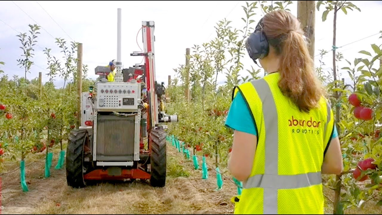 Robotic picking machine's first apple harvest underway