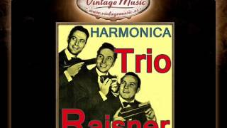 Trio Raisner -- If You See Me Comin