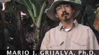 Chagas Disease Research Project: Introduction (Part 1 of 6)