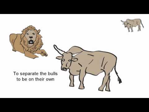 The Lion and Three Bulls - Aesop
