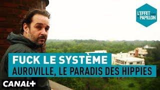 Fuck le système : Auroville, le paradis des hippies - L'Effet Papillon - CANAL+