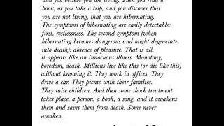 Humans Verses Human Beings