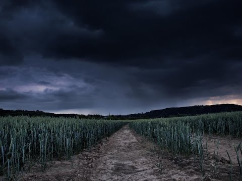 How climate change is making crops POISONOUS