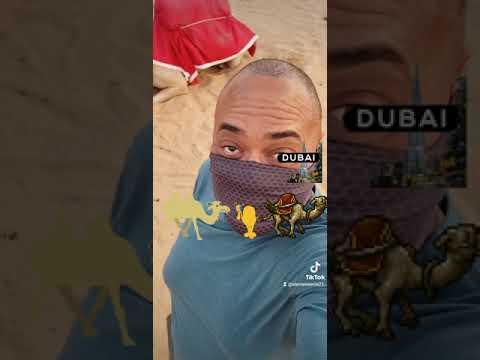 #traveldiaries #trave July 11-18 #2021 @alphadmc @alphatoursae #dubai #dubaidesert #desert #camel