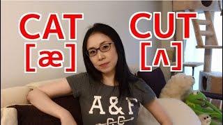 CATとCUT、母音の違いと発音のコツ