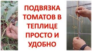 Подвязка томатов простым способом / Уход за томатами в теплице / Пасынки на томатах(Привет друзья! В этом ролике я показал как подвязать томаты в теплице простым удобным способом. Также показ..., 2016-05-25T04:00:00.000Z)