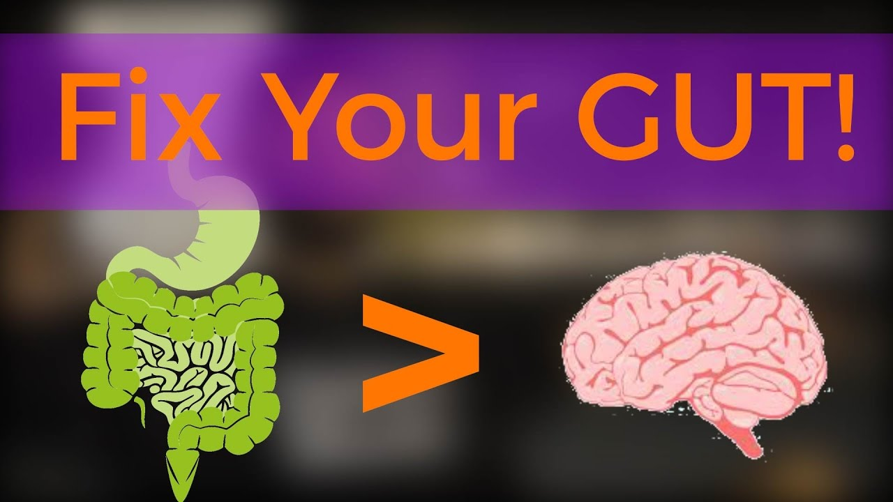 Image result for brain gut talks